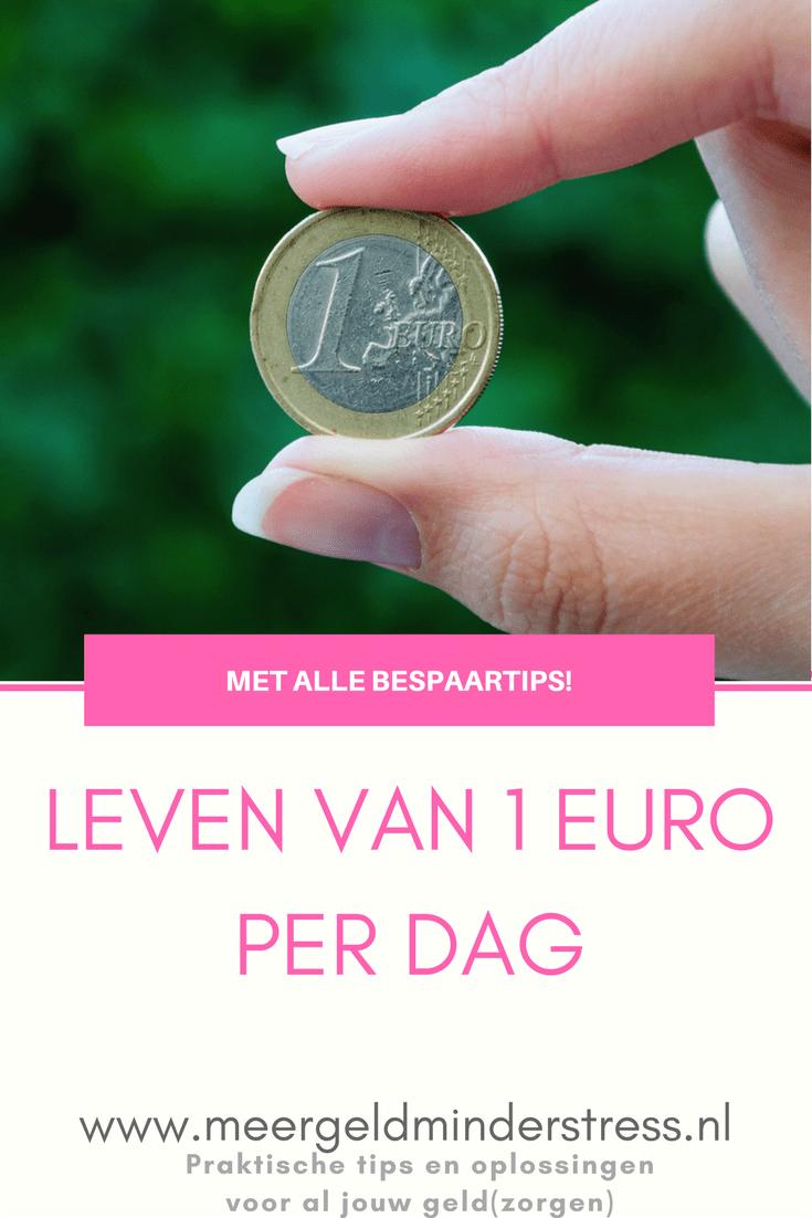 Leven van een euro per dag #meergeldminderstress #besparen #geldbesparen #bespaartips