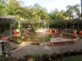 De fontein