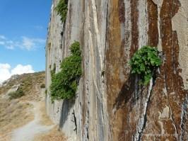 Paligremnos rock in Plakias Crete