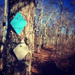 Trail marker on a tree