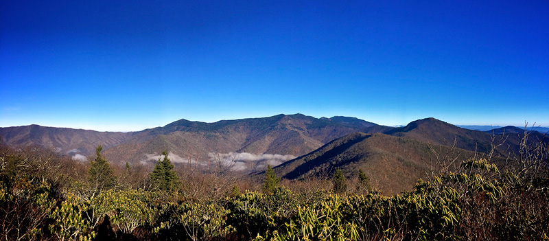 View from Greybeard Mountain