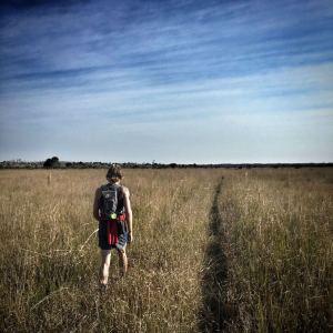 Runner crossing a prairie in The Fakahatchee Strand