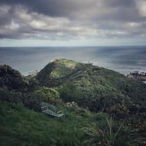 Hills near Wellington, New Zealand