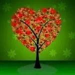 bellos mensajes de amor para tu pareja, bonitos pensamientos de amor para tu pareja