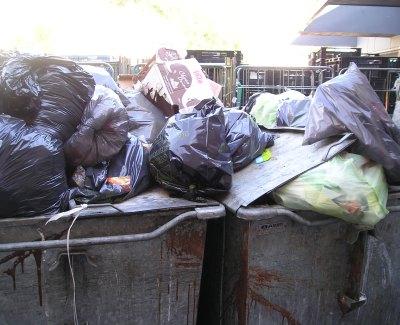 afvalcontainers die ongedierte aantrekken