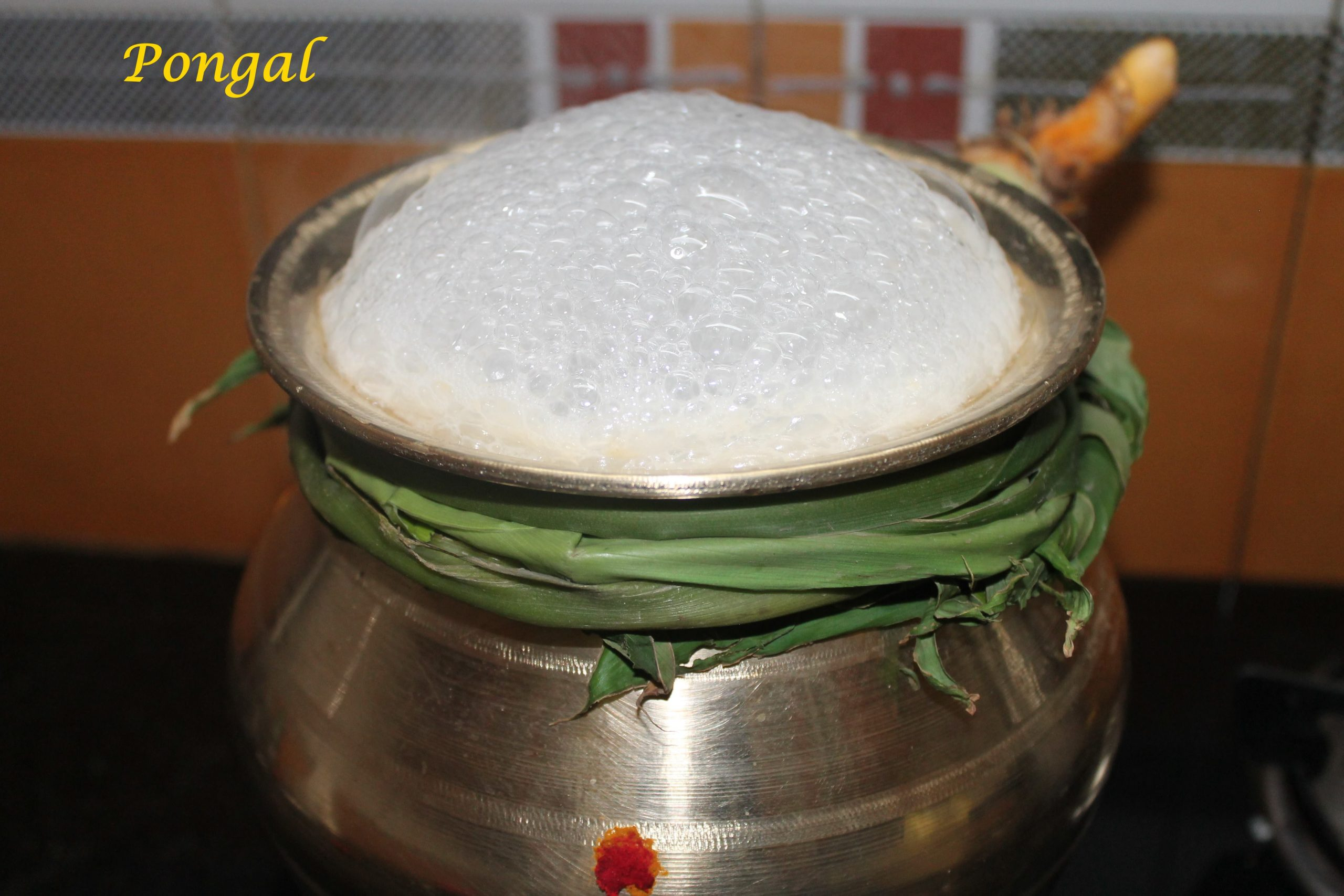 Pongal in pot