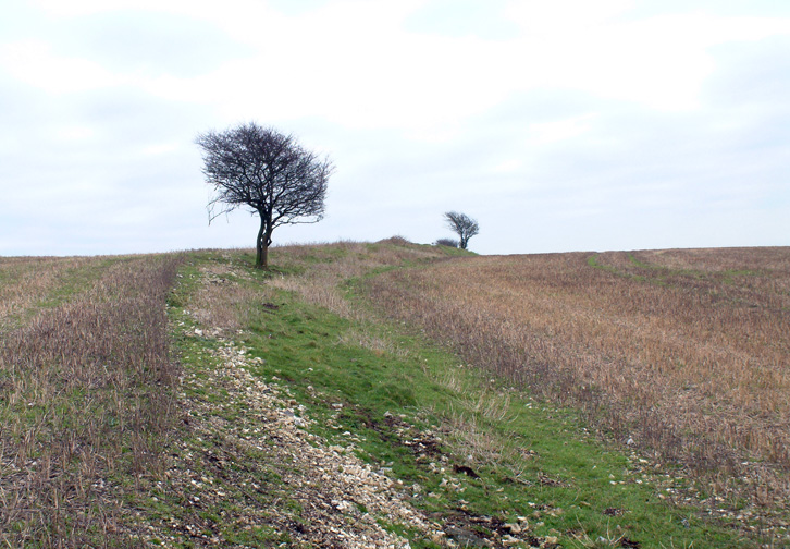 Image result for harting Hill Hillfort South Harting