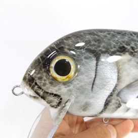 crankbait, swimbait, megasalt, saltwater fishing