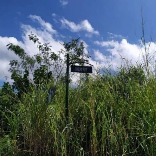 Bank foreclosed Eastland Heights (formerly Forest Hills Golf & Residential Estates), Brgy. Inarawan, Antipolo, Rizal - Image 3