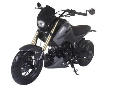 Fuerza 125 125cc Motorcycle
