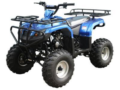 Taotao 125F1 110cc Kids ATV