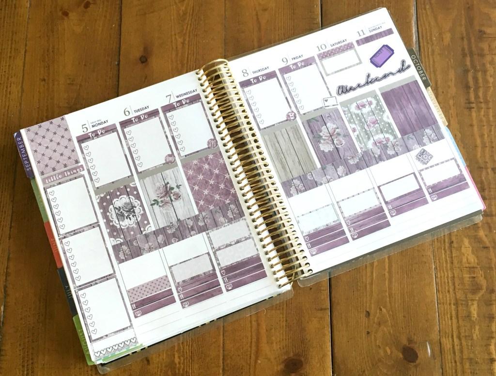 Plan with Me - Erin Condren Planner