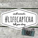 #LifeCaptcha January 2017