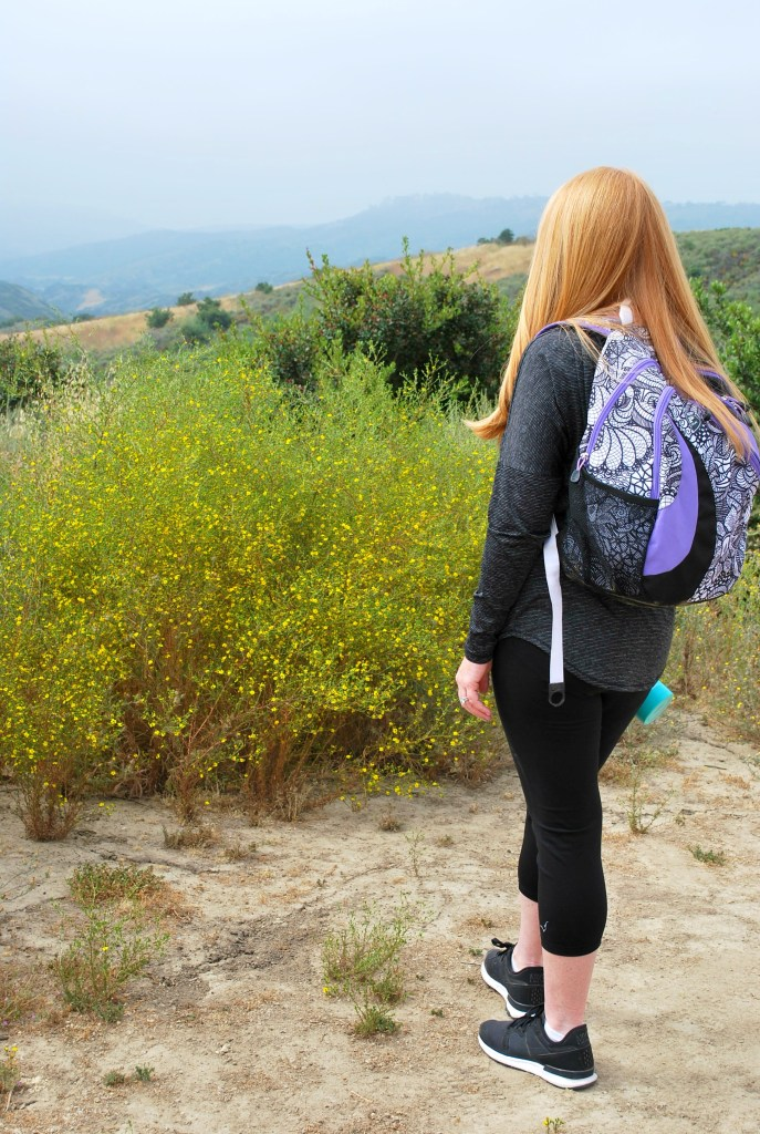 HIking with Kids - How to have a successful day hiking with your whole family. #collectivebias @BlueLizardSummer @walmart @bluelizardsun