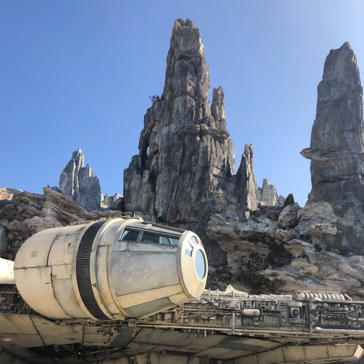 What do you miss about Disneyland? Will you run to Star Wars Land and grab a blue milk and get yelled at by a Storm Trooper when the park reopens in 2021? See what to expect when Disneyland reopens to guests.