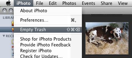 Emptying iPhoto's Trash