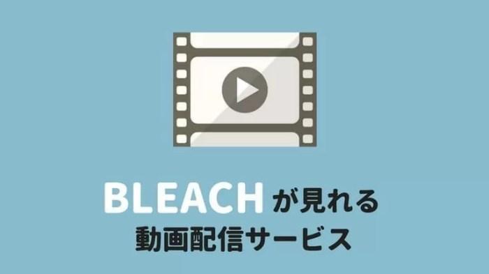 BLEACH(ブリーチ)のアニメ・映画が見れる動画配信サービス