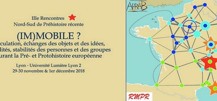 IIIe Rencontres Nord-Sud de Préhistoire récente, Lyon