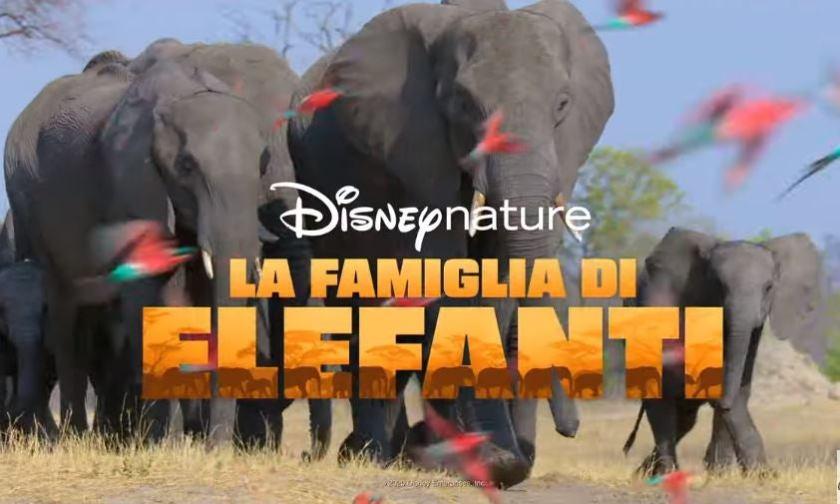 La-Famiglia-di-Elefanti-Disney-Plus