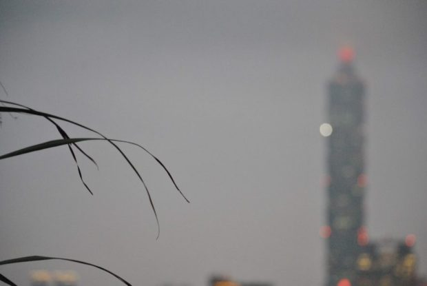 out of focus red lights of Taipei 101 at dusk with some long grass in foreground