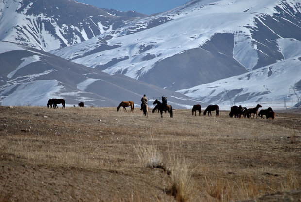 men on horses surrounded by unsaddled horses in front of snowy mountains in Kyrgyzstan