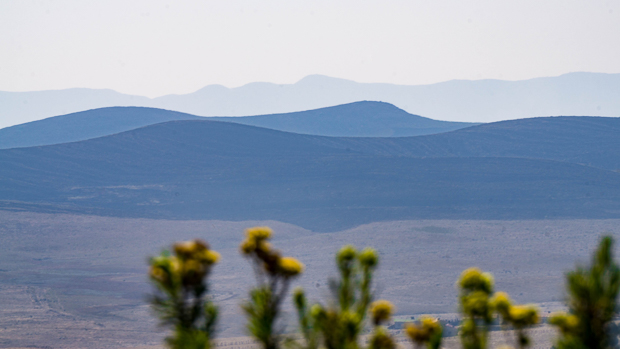 yellow flowers and blue peaks layered on one another in Kitulo Plateau National Park, Tanzania