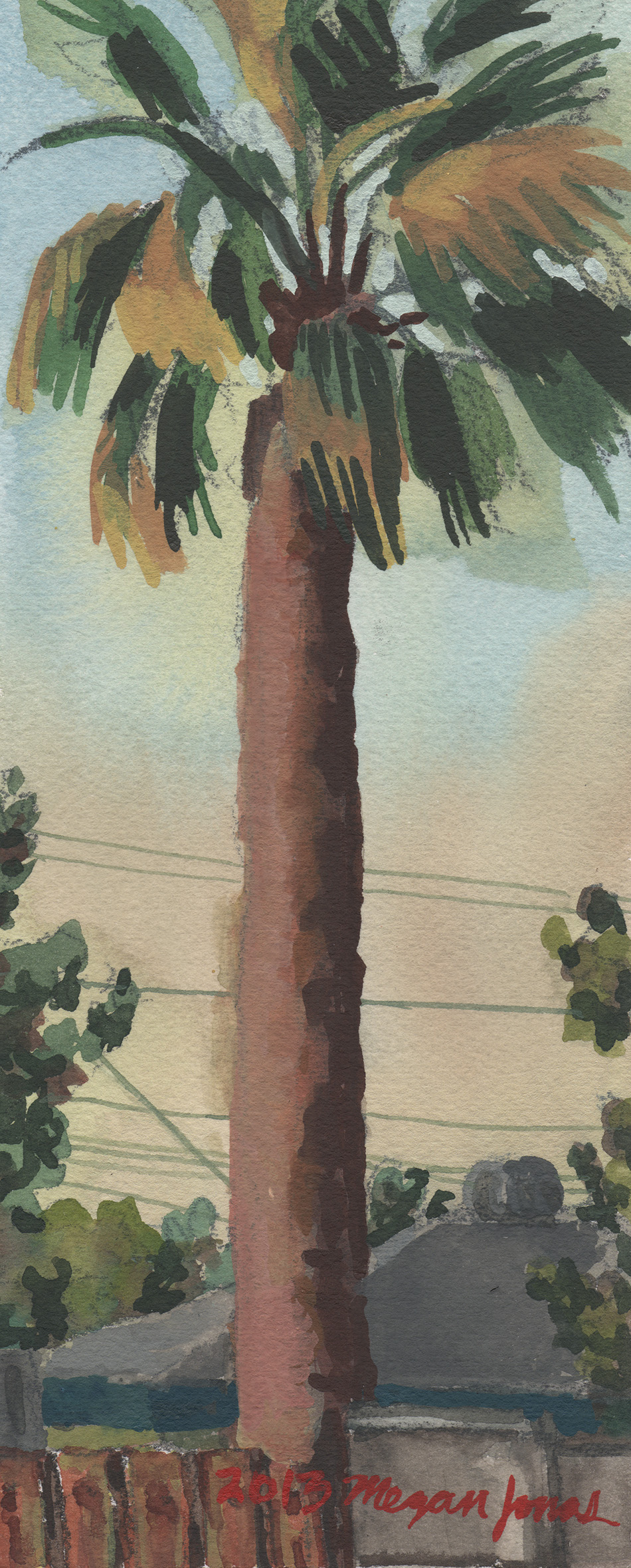 Another Palm Tree