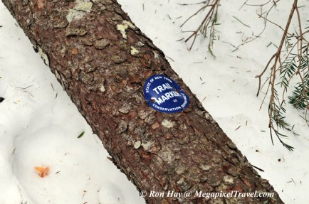 RON_3299-Downed-trail-marke