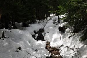 RON_3315-snowy-trail