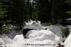 RON_3320-Snowy-trail