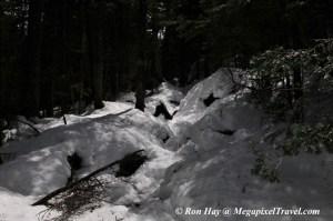 RON_3323-Snowy-trail