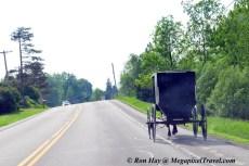 RON_3368-Amish-buggy