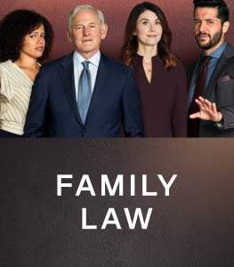 """Family Law – TV Series (2021)  – Also known as """"Семейная юрфирма""""_61442ad5264b3.jpeg"""