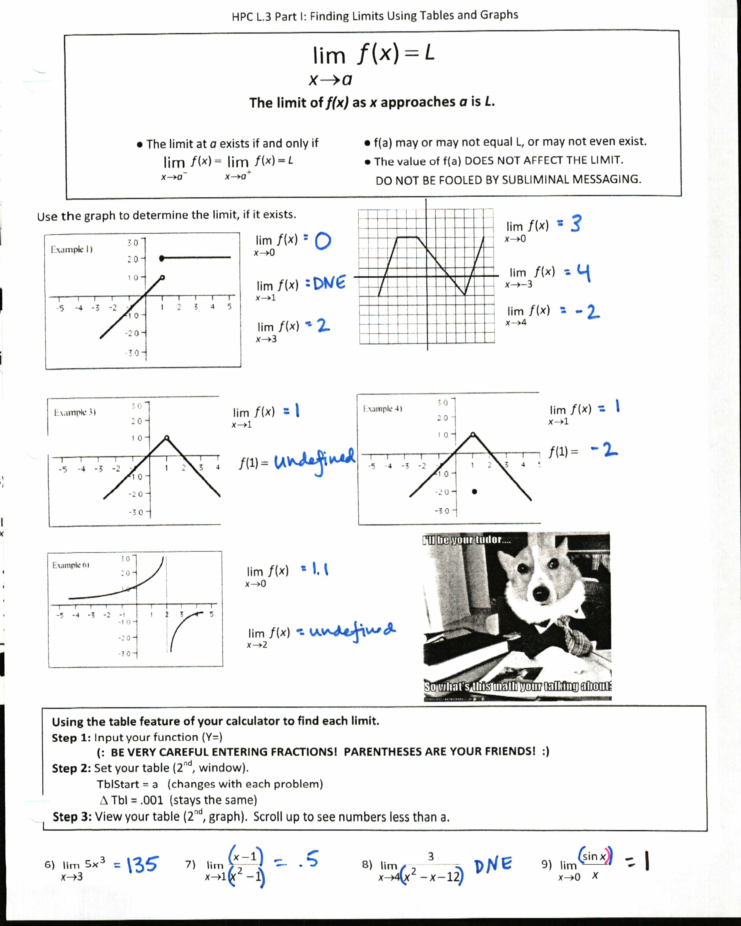 Worksheet Limits At Infinity Worksheet Worksheet Fun Worksheet Study Site