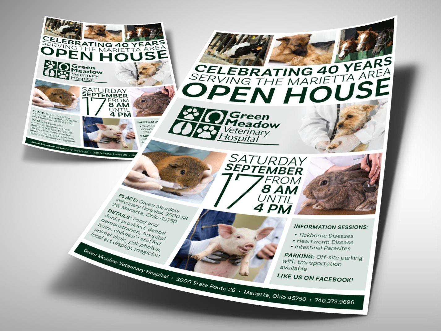 Green Meadow Veterinary Hospital Anniversary Promo