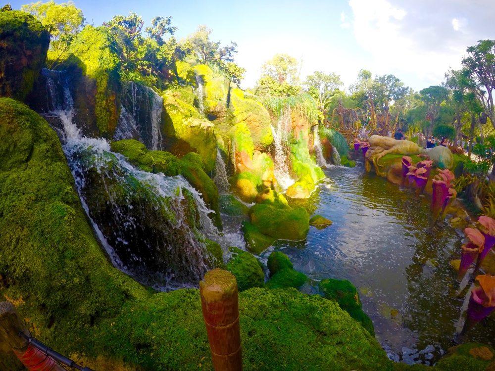 A photo of Pandora at Animal Kingdom