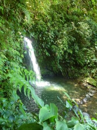 05-Waterfall1-01