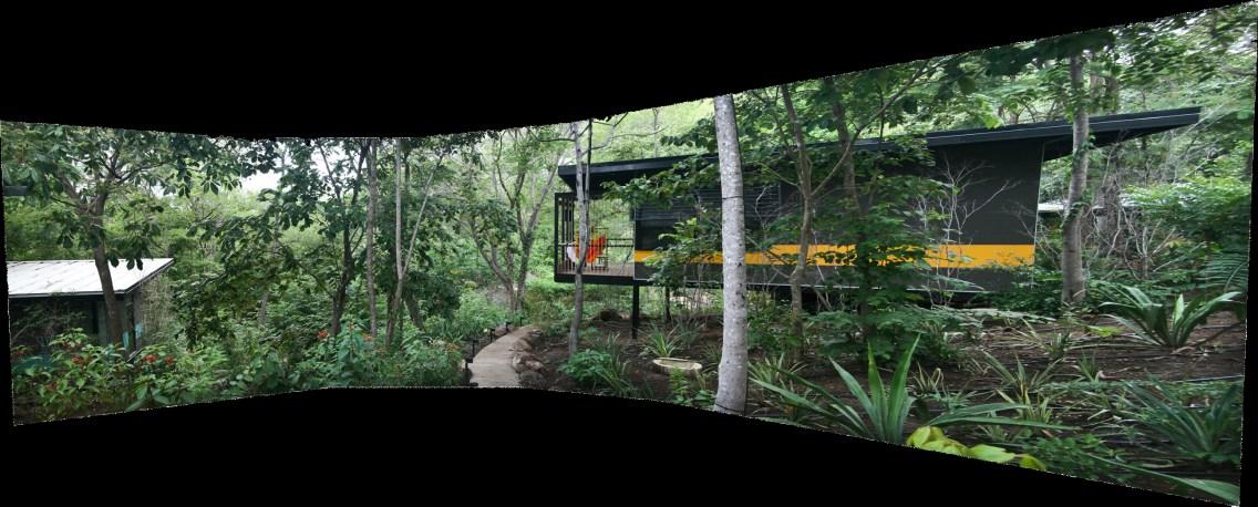 Rick Meghiddo - Rio Perdido 6 - Costa Rica
