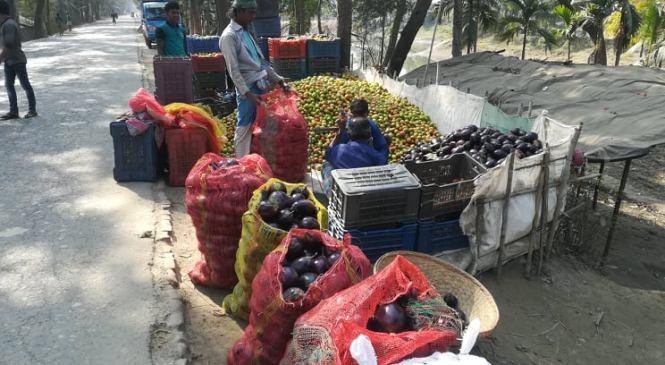 লক্ষ্মীপুরে ২০০ কোটি টাকার শাক-সবজি উৎপাদন