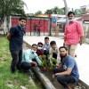 লক্ষ্মীপুরে কলেজ ছাত্রদলের বৃক্ষরোপণ