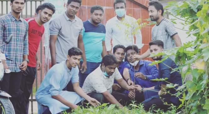 লক্ষ্মীপুরে ঢাকা কলেজস্থ ছাত্র কল্যাণ এসোসিয়েশনের বৃক্ষরোপণ