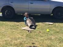 Helping Algaa clean the van