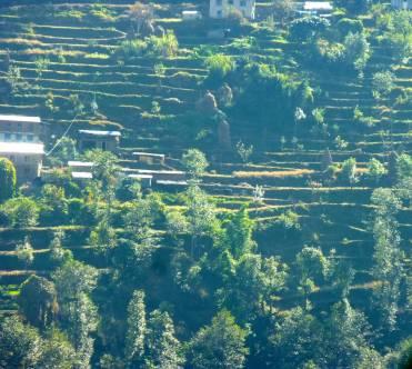 Terraced fields across the river