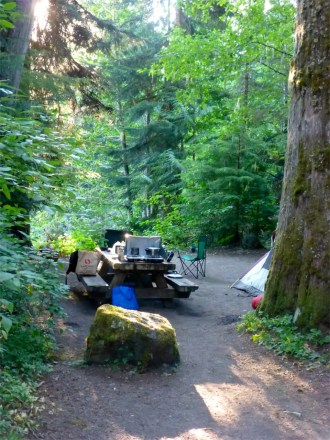 Our favorite campsite, Silver Fir.