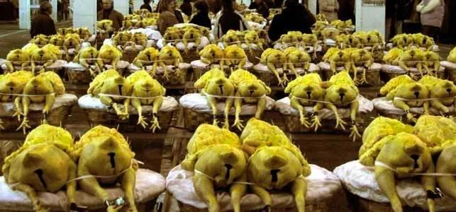 La tradicional feria de Vilalba acogerá unos 1.500 capones el 18 de diciembre