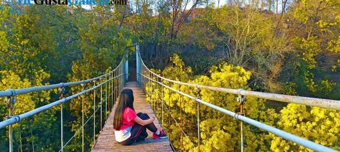 Puente colgante de Calvelo, uno de los más bonitos de Galicia