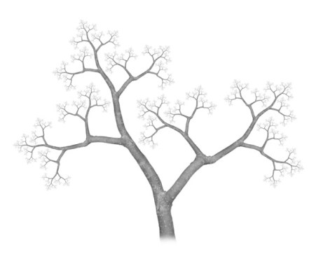 Fractal Tree: self-similar at varying scales.