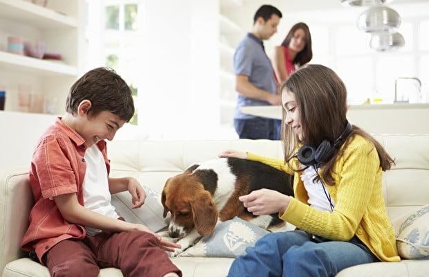 Bebek ve çocuklar için en uygun köpek cinsleri