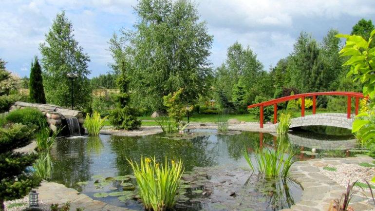 jardin japonais ou un jardin zen