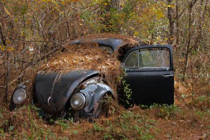 Volkswagen in the Woods © ostrows1 - Fotolia.com